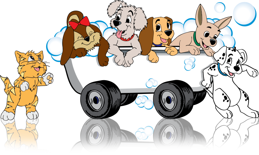 Pet Grooming On wheels